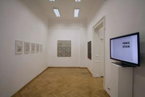 (Para)Matters of Perception, Funnel Gallery Bucharest (1)
