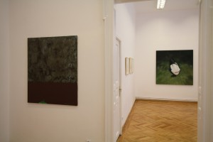 (Para)Matters of Perception, Funnel Gallery Bucharest (6)