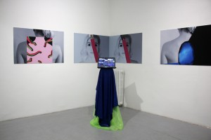 1. Terrains of the Body, Brigita Antoni, Selfie Vaginas