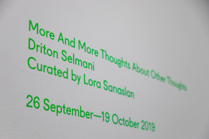 4. Driton Selmani, More and More Thoughts about Other Thoughts