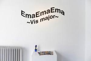 Vis Major, Emilija Radojičić (1)