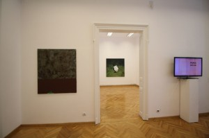(Para)Matters of Perception, Funnel Gallery Bucharest (5)