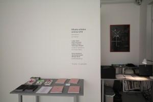 (Para)Matters of Perception, Ljubljana (3)