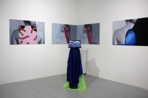1. Terrains of the Body, Brigita Antoni, Selfie Vaginas