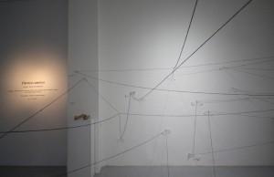 12. Rachel Marks, Dreamcatcher