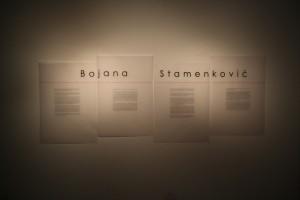 Bojana Stamenković, Ispod površine (10)